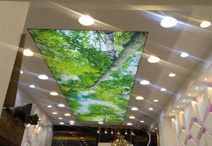 سقف کشسان چیست؟